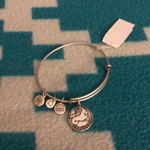Alex and Ani Capricorn bracelet